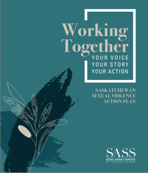 SASS Action Plan